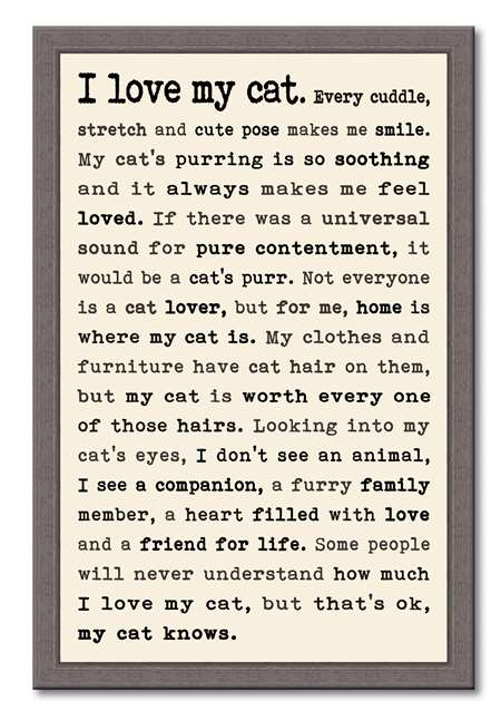 60397 I LOVE MY CAT - FRAMED TYPOLOGY 12X18