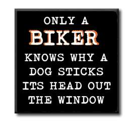 63085 ONLY A BIKER KNOWS WHY A DOG STICKS - CHUNKIES 4X4