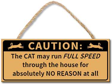 70954 CAUTION - THE CAT MAY RUN FULL SPEED THROUGH THE HOUSE ...