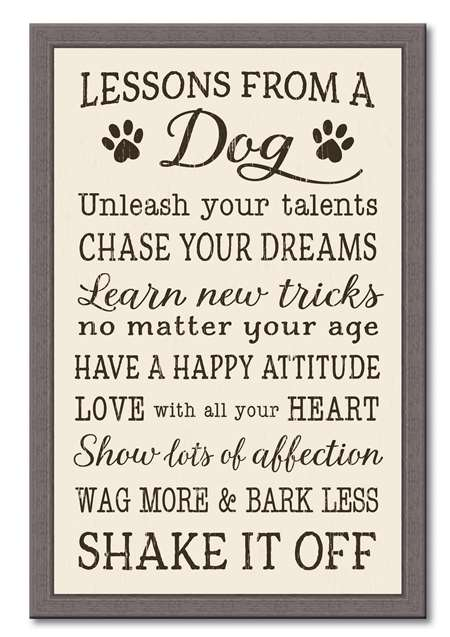 74654 LESSONS FROM A DOG - 12X18 FRAMED